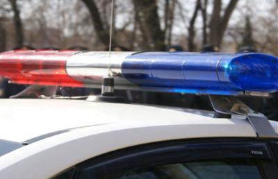 ВШацком районе работники ГИБДД применили табельное оружие