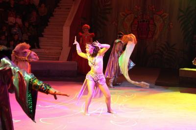 Представления в рязанском цирке