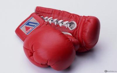 Молодые рязанские боксёры завоевали 4 награды главенства ЦФО вТульской области