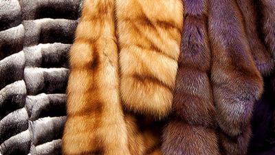 Неменее тысячи меховых изделий без маркировки арестовано в столице