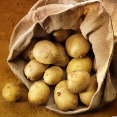 Врегионе продолжается уборка картофеля и сладкой свеклы IKAR62 news