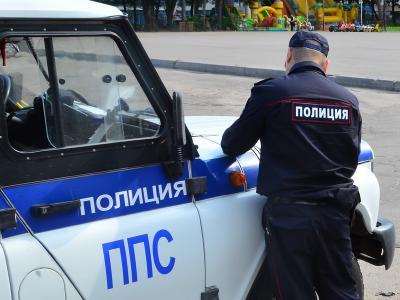 Полицейская машина заехала напереход впогоне захулиганами