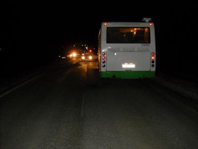 ВРязанской области автобус насмерть сбил человека