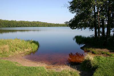 ВУржинском озере потонул мужчина